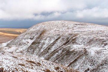 Banner winter