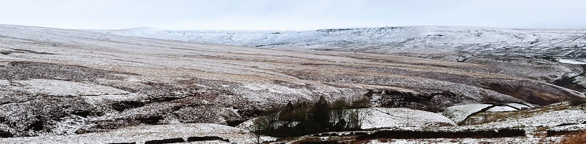 Banner Moors